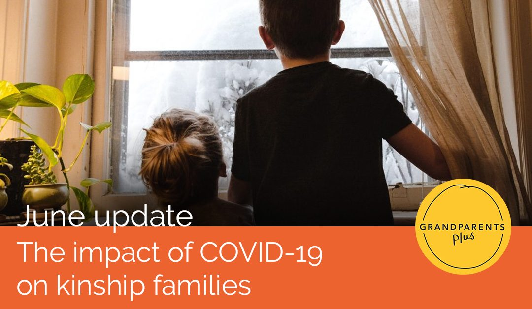 The impact of COVID-19 on kinship families: June update