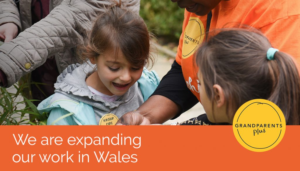 Grandparents Plus is delighted to announce we are expanding our work in Wales